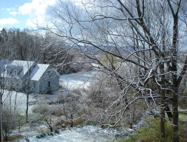 Snow phoenix farm