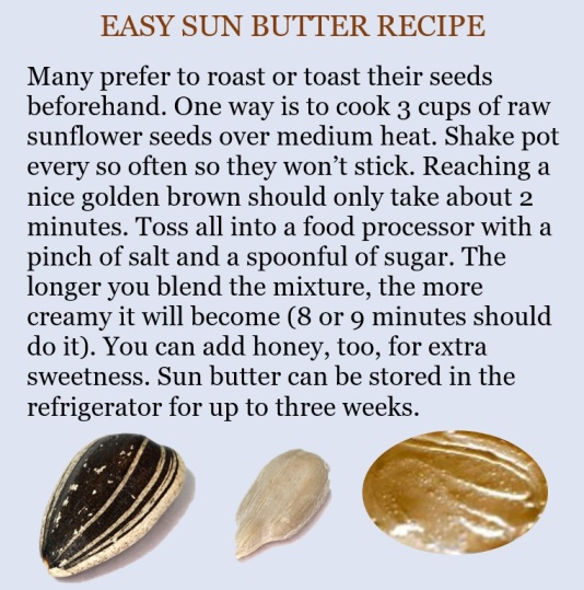 sunbutter-recipe